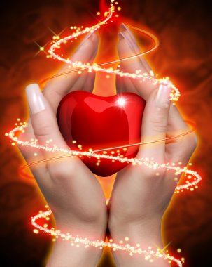 Female hands with red heart stock vector