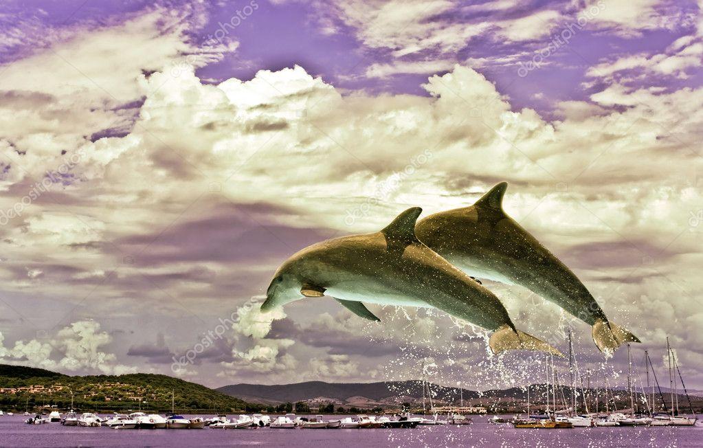 Фотообои Couple Of Dolphins Jumping