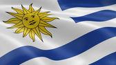 Fotografia Bandiera Uruguay nel vento