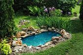 malý rybník v zahradě
