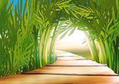 Fotografia boschetto di bambù