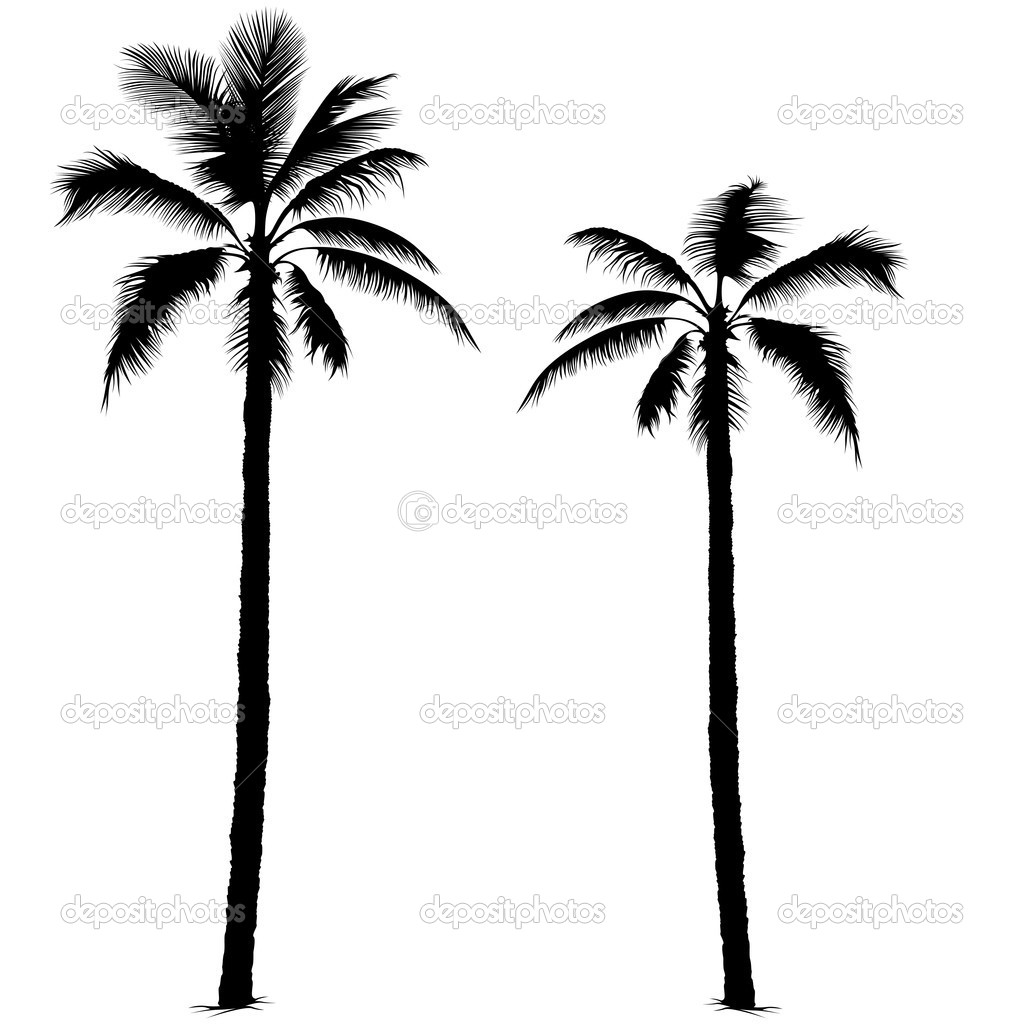palm tree stock vector dero2010 3200544 rh depositphotos com palm tree vector free palm tree vector file