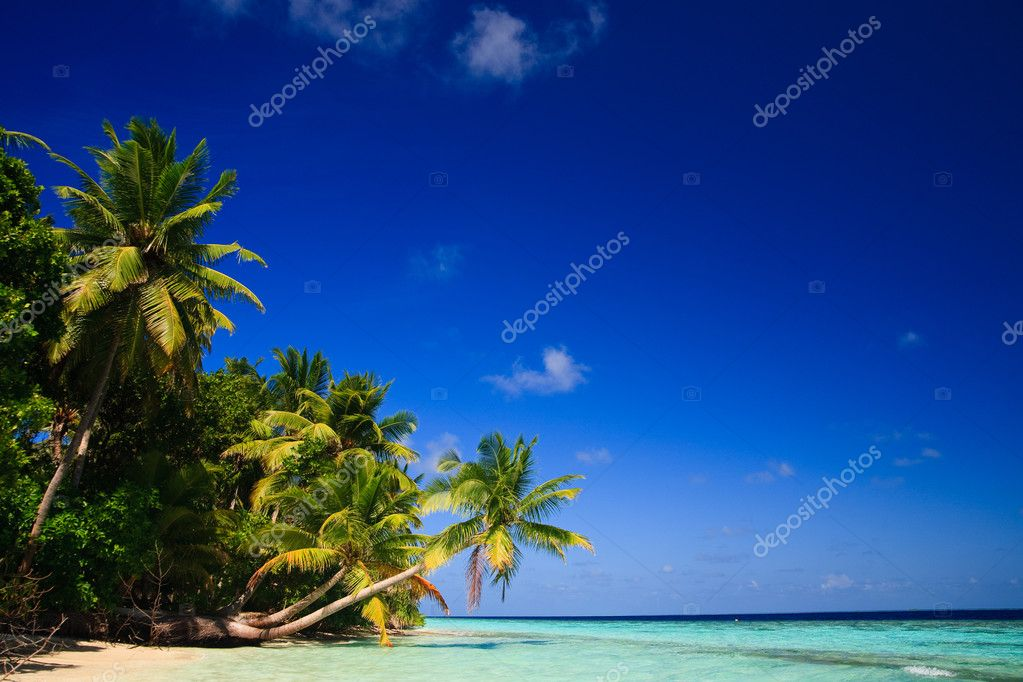 Фотообои Tropical Paradise at Maldives