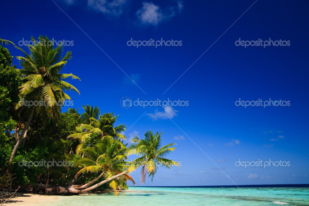 Фотообои Тропический рай на Мальдивах