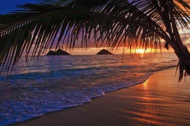 Pacific sunrise at lanikai