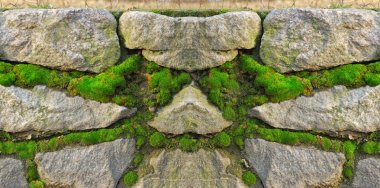 Stone wall, becoming over green moss
