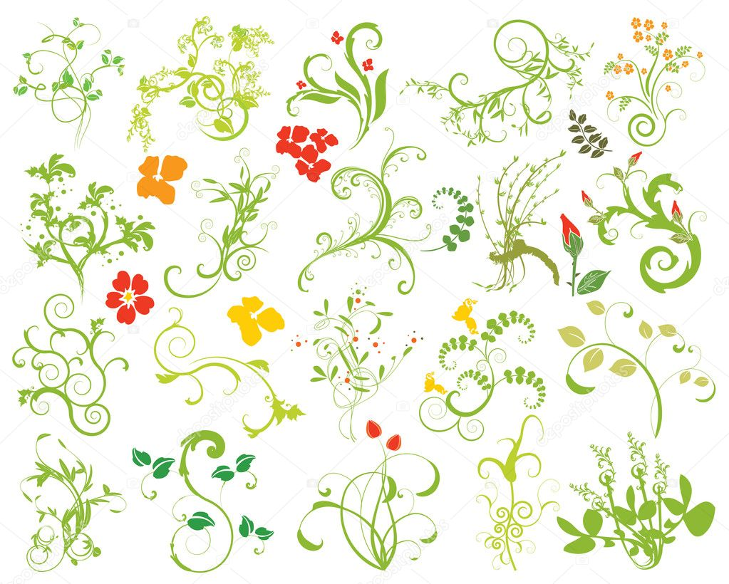 Collection of floral design elements
