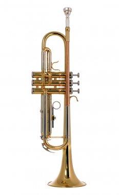 Musical instument trumpet