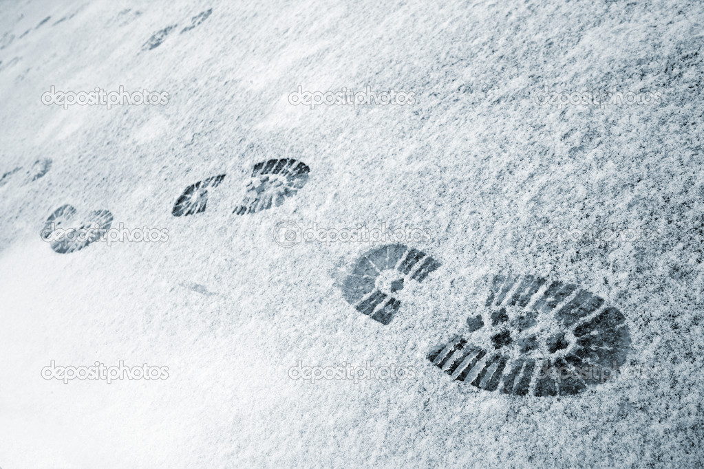 https://static4.depositphotos.com/1012669/291/i/950/depositphotos_2912435-stock-photo-footprints-in-snow.jpg