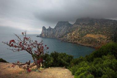 Crimea. Gloomy morning