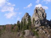 rocce sopra legno
