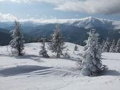 collina bianca