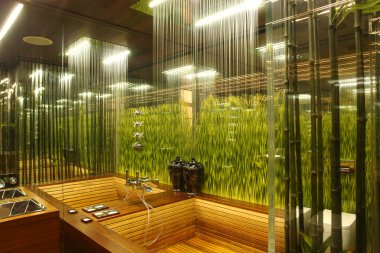 Interior of a bathroom with the grass