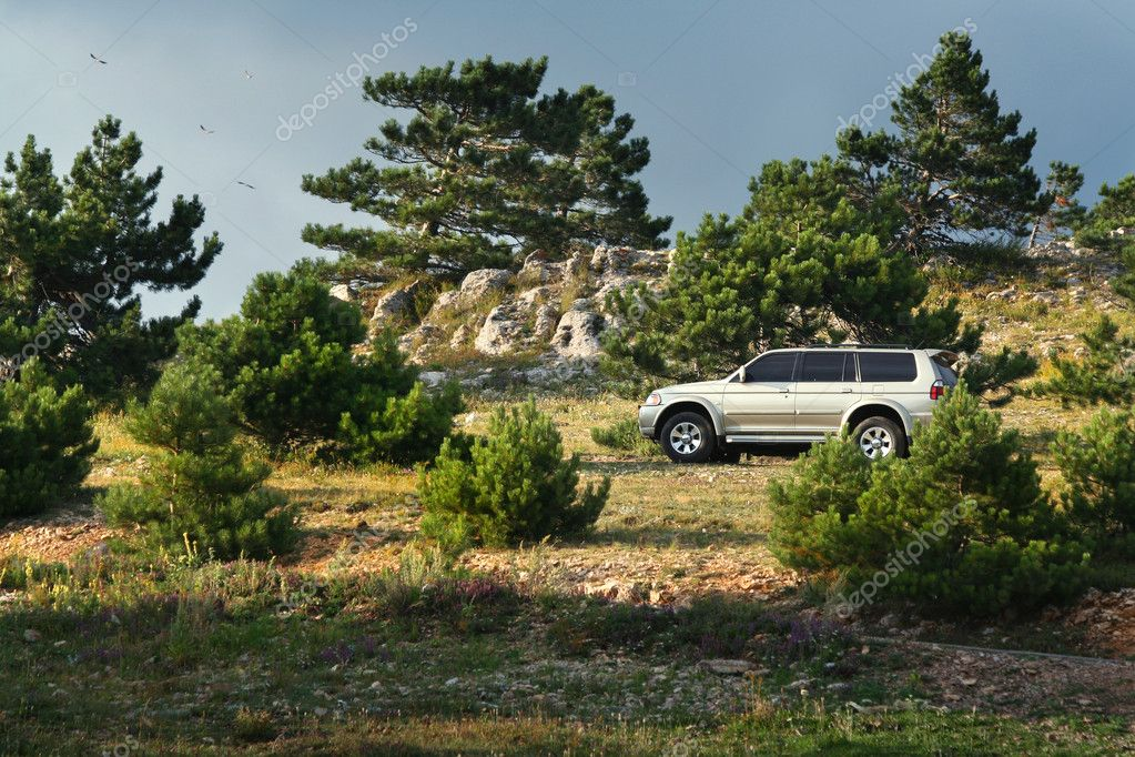 Offroading in an Suv / 4x4