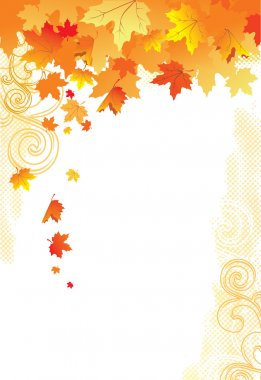 Autumn Background / gold leaves on white background