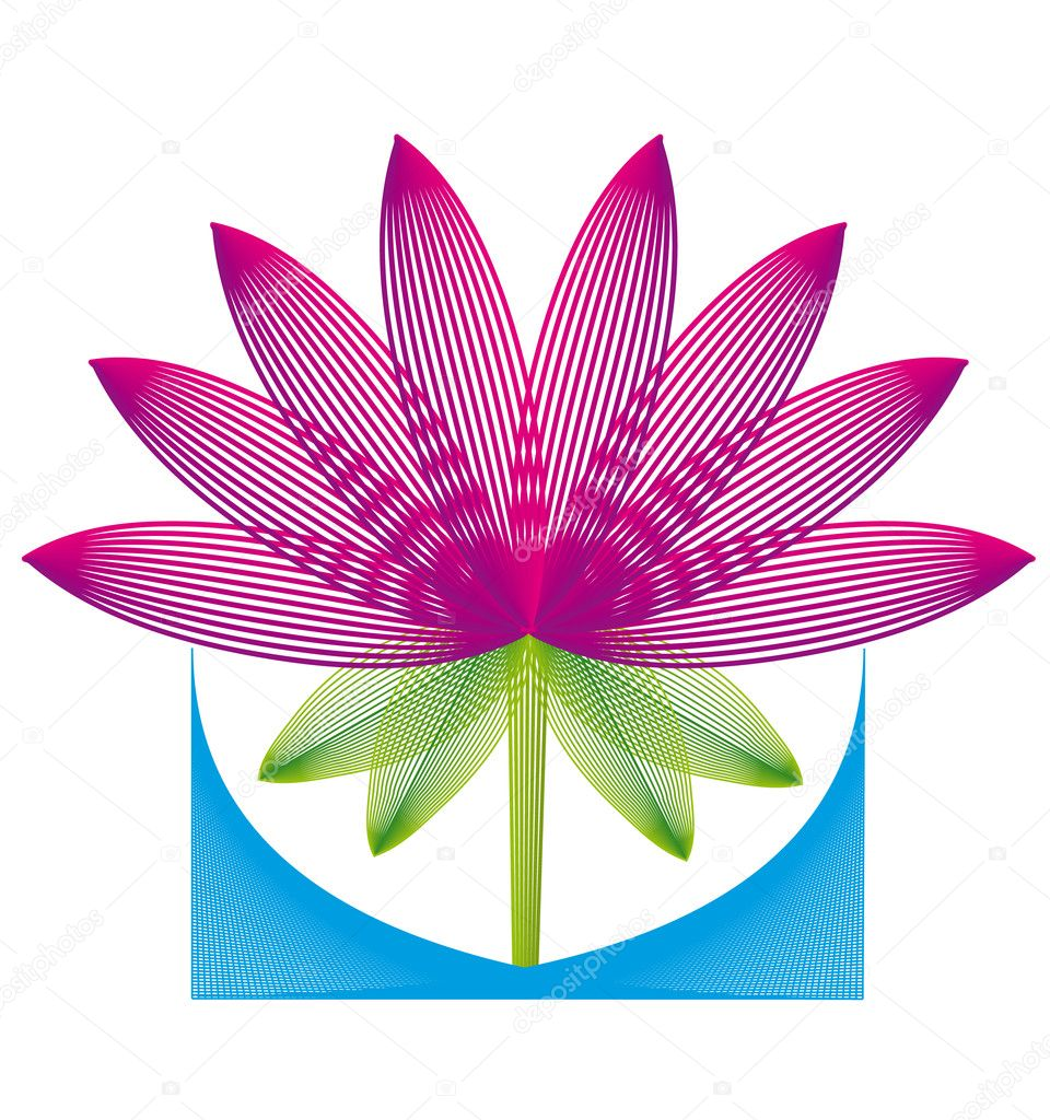 Vector illustration, lotus flower.