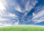zelený svah s idylickým modrá obloha
