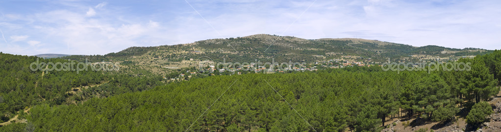Villages in the Forest