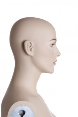 Head of the female mannequin | Studio isolated