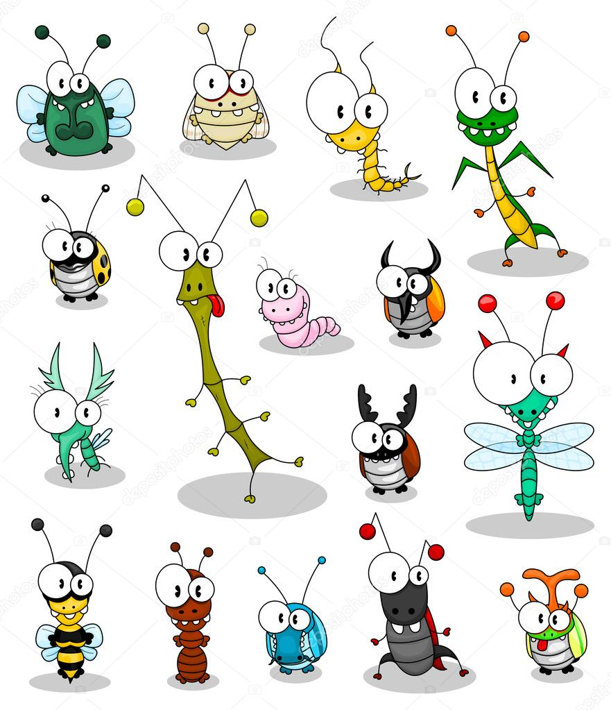 Dessin animé insectes