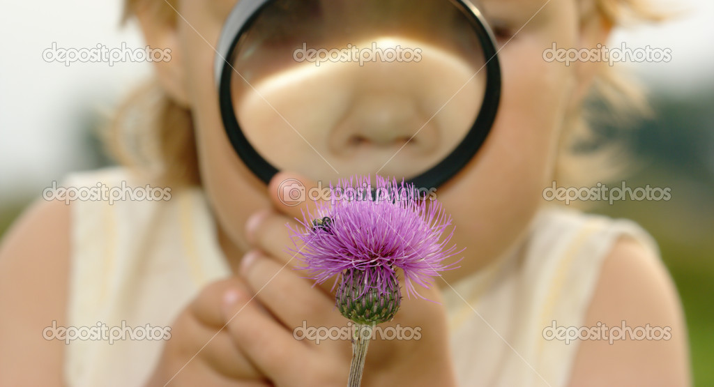 Child is looking at flower