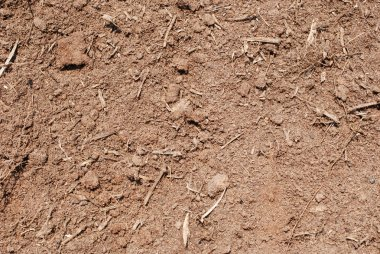 Closeup of dirt for background use. stock vector