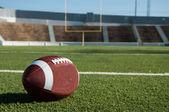 Fotografie americký fotbal na hřišti