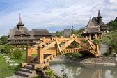 Fotografie Barsana Monastery landscape view