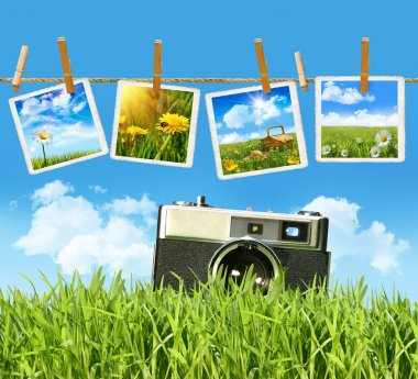 Grass with vintage camera and pictures