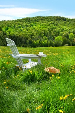 Relaxing on a summer chair in a field