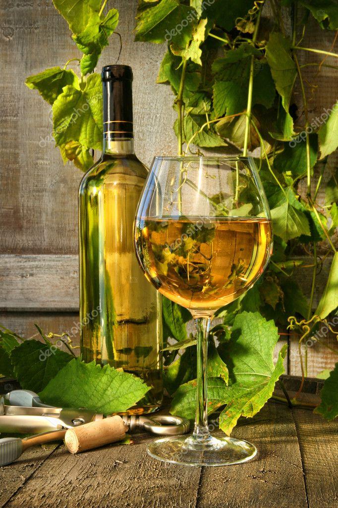 verre de vin blanc et bouteille sur canon avec des vignes en arri re plan photographie. Black Bedroom Furniture Sets. Home Design Ideas
