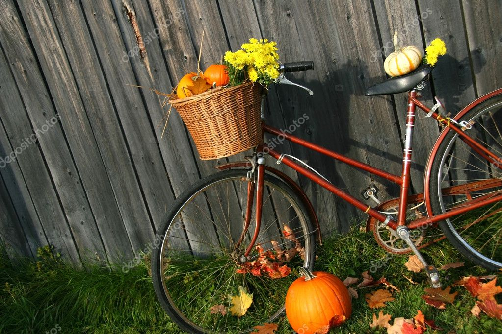 Old bicycle with pumpkins