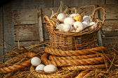 Fotografie Basket of eggs on straw