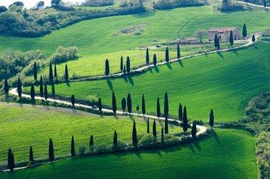 Beautiful Tuscany images