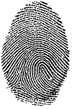 Black and White Fingerprint