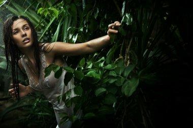 Delicate brunette posing over nature background