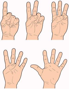 Hands 1 through 5