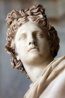 Apollo Belvedere statue. Detail