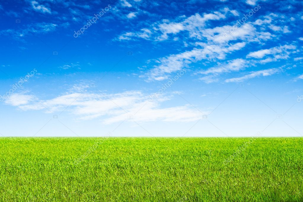 Blue sky and green grass scene