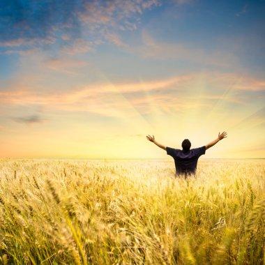 """Картина, постер, плакат, фотообои """"человек в области пшеницы"""", артикул 3482417"""