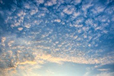 Majestic evening skies