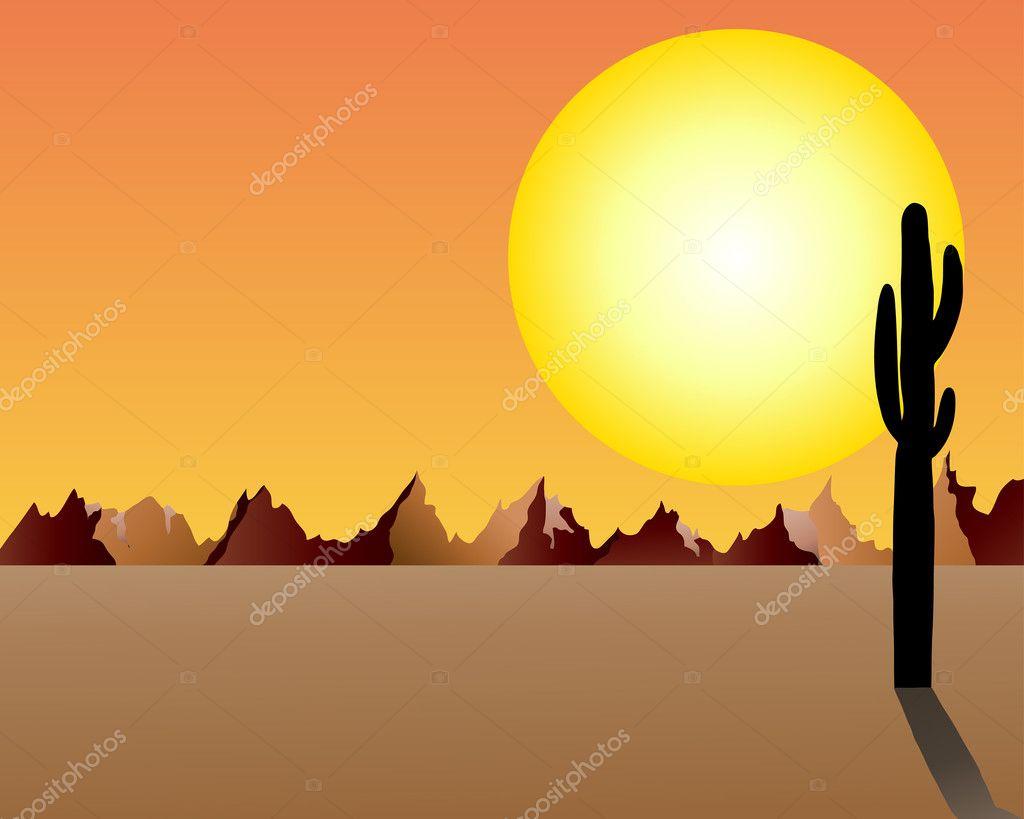 Desert and rocks