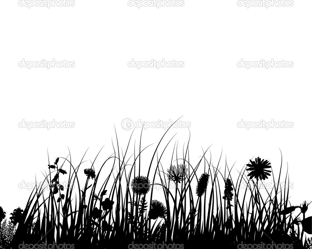 Vector grass and flowers