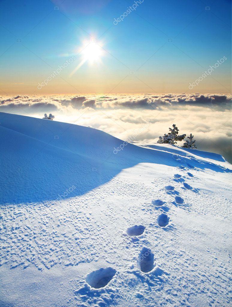Footprints on a snow