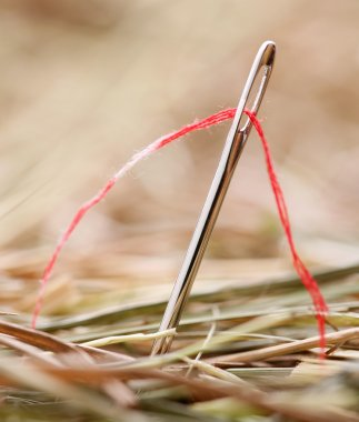 Needle with a red thread in a haystack
