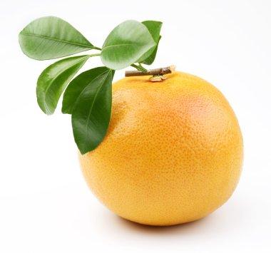 Ripe grapefruit.