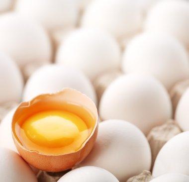 Broken brown egg is among the whites of eggs. stock vector