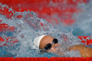 freestyle swimmer during  race