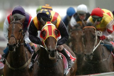 track horse racing