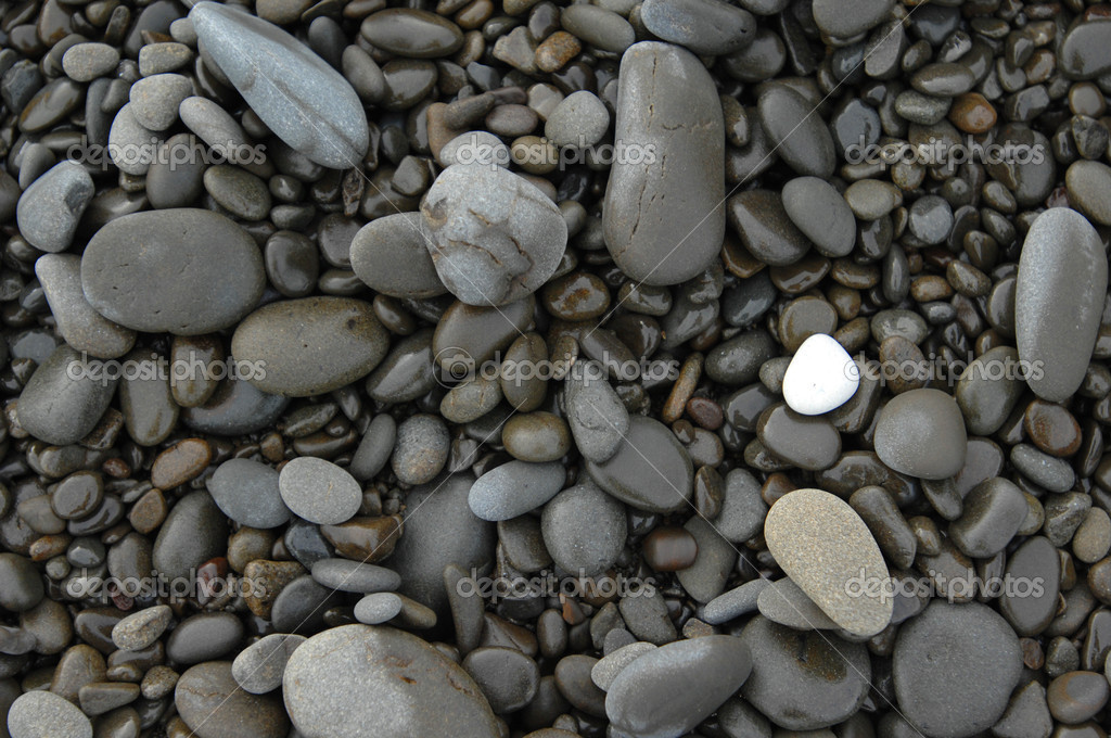 white stone on pebbles